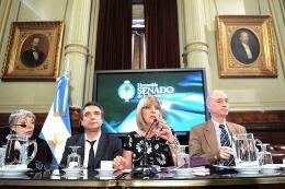 Argentina Digital: continuará debatiéndose toda la semana en la Cámara de Senadores