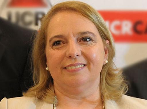 Silvana Giudici en el directorio del Enacom