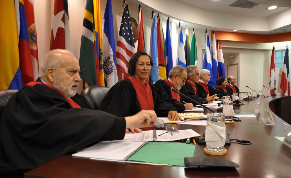 La CIDH dará audiencia en abril para tratar la LSCA
