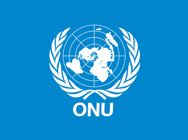 La ONU presentó recomendaciones sobre responsabilidad de intermediarios en Internet