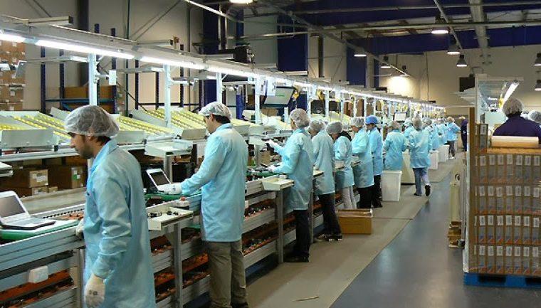 En Tierra del Fuego redujeron a la mitad los turnos en las fábricas